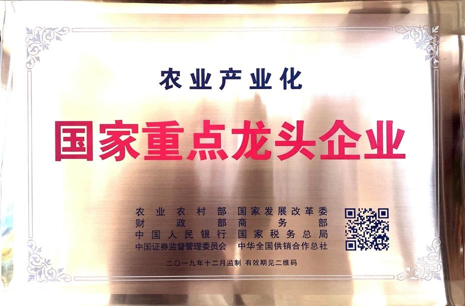 中国灵芝十大品牌|仙客来灵芝|仙客来灵芝破壁孢子粉|仙客来孢子油|仙客来灵芝饮片|仙客来破壁孢子粉|仙客来灵芝中药饮片|驰名商标|灵芝|